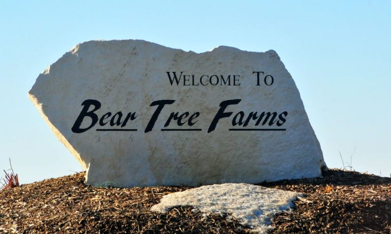 Bear Tree Farms/Fox Hill Estates – Family Friendly Community