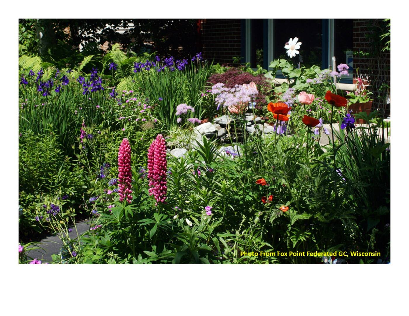 Wisconsin Extreme Weather – What's It Doing to Your Landscaping?