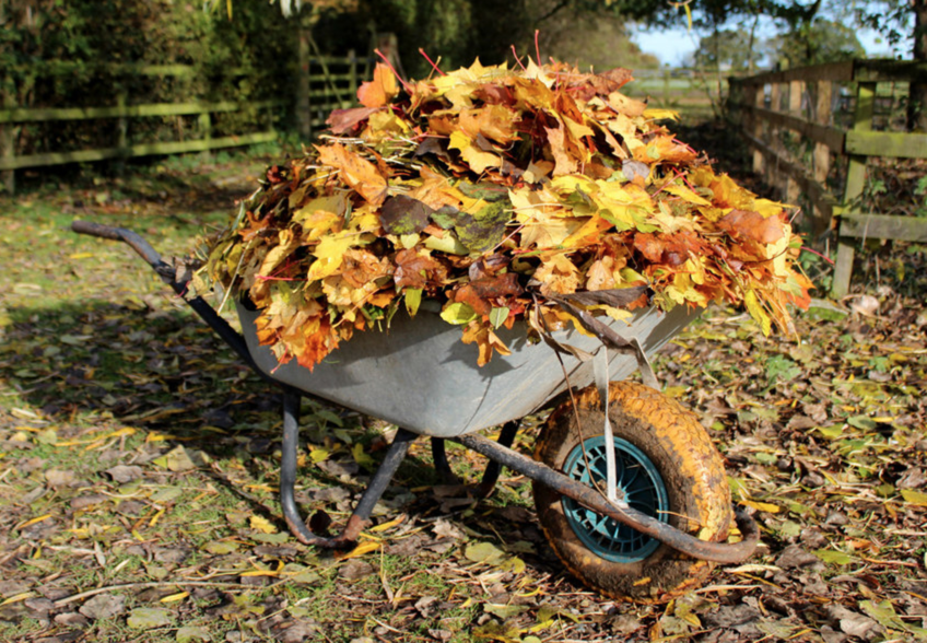 4 Fall Chores for Keeping Up Your Home
